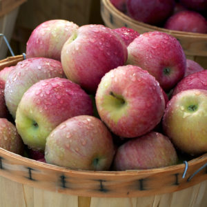 Apple Jam October 20, 2018