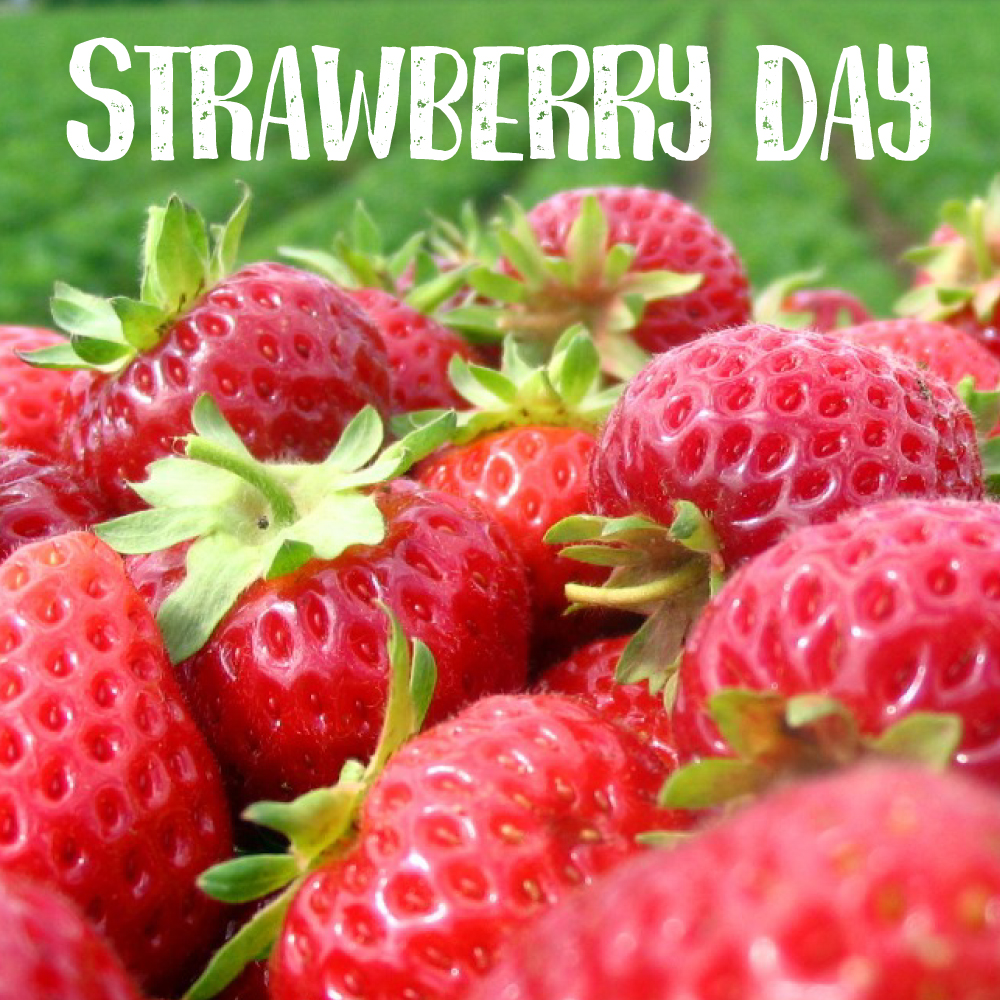 16th Annual Strawberry Day