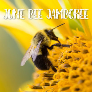 June Bee Jamboree