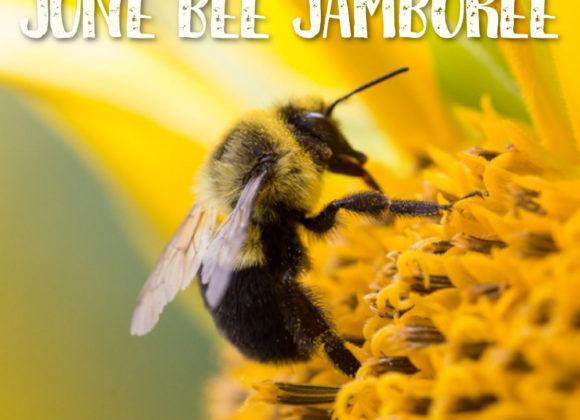 June Bee Jamboree